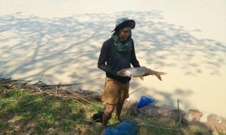 หมู่บ้านในโคราช พลิกวิกฤติแล้งเป็นโอกาส เปิดสระน้ำสาธารณะ ขายบัตรลงแขกจับปลา