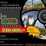 """เชิญชวนผู้สนใจ รักการถ่ายภาพ ส่งภาพประกวด กับ  โครงการประกวดภาพถ่าย """"สวนนุงนุช"""" 1 ใน 10 สวนสวยที่สุดในโลก"""" ชิงเงินรางวัลมูลค่ารวมกว่า 710,000 บาท"""