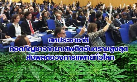สหประชาชาติ ถอดกัญชาจากยาเสพติดอันตรายสูงสุด